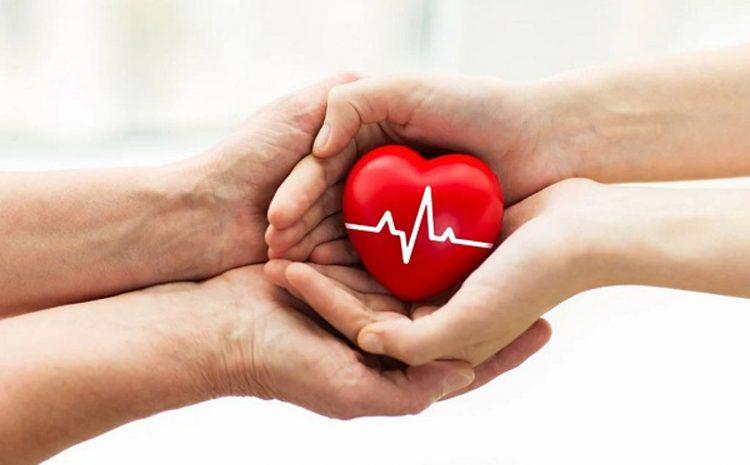 Cara Menjaga Kesehatan Jantung Secara Efektif dan Mudah